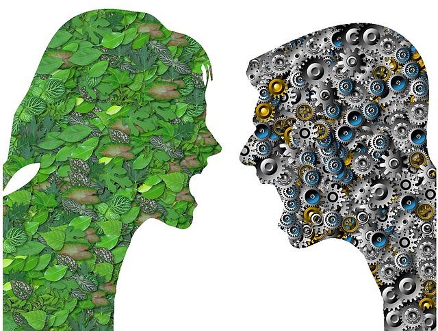 konflikt ekologie